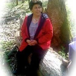 Fatiha Basli